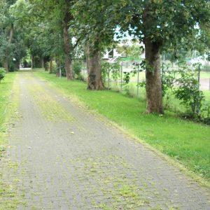 Zufahrtsweg Schützenhaus Stommeln 2010