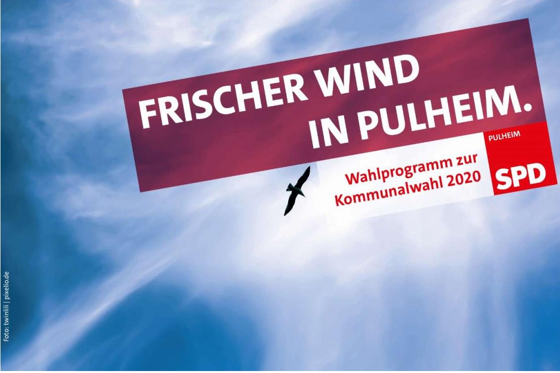 """Coverbild """"Frischer Wind für Pulheim"""" ist eine Möwe vor klarem Himmel"""